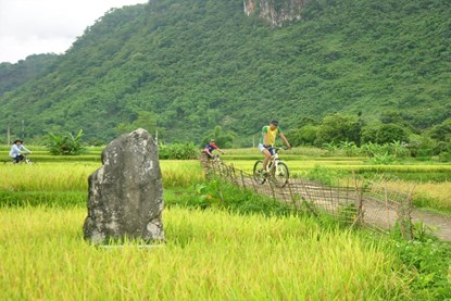 Rice fields in Mai Chau