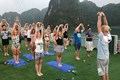 Yoga class in oasis bay cruise